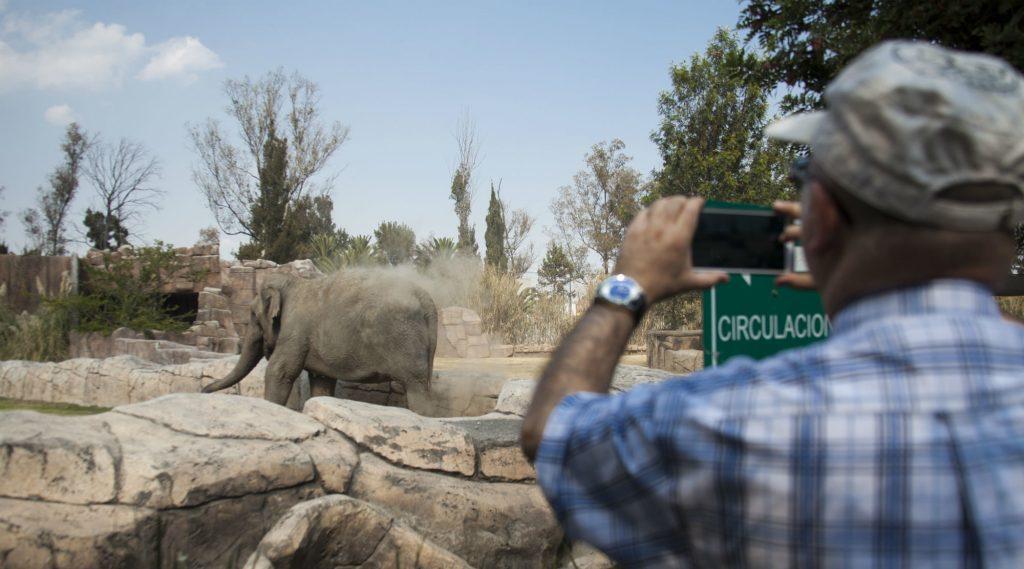 10 zoológicos mas famosos de Mexico con Viatge